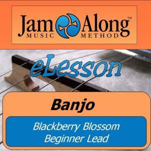 blackberry blossom - beginner lead (banjo)