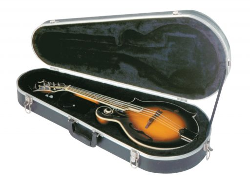 mandolin-case