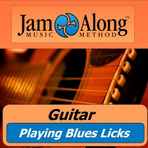 guitar lesson - playing blues licks - product image