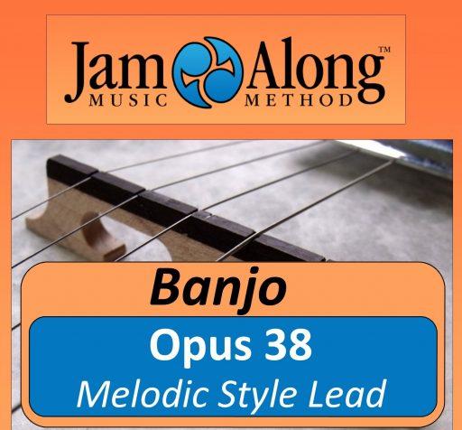 Opus 38